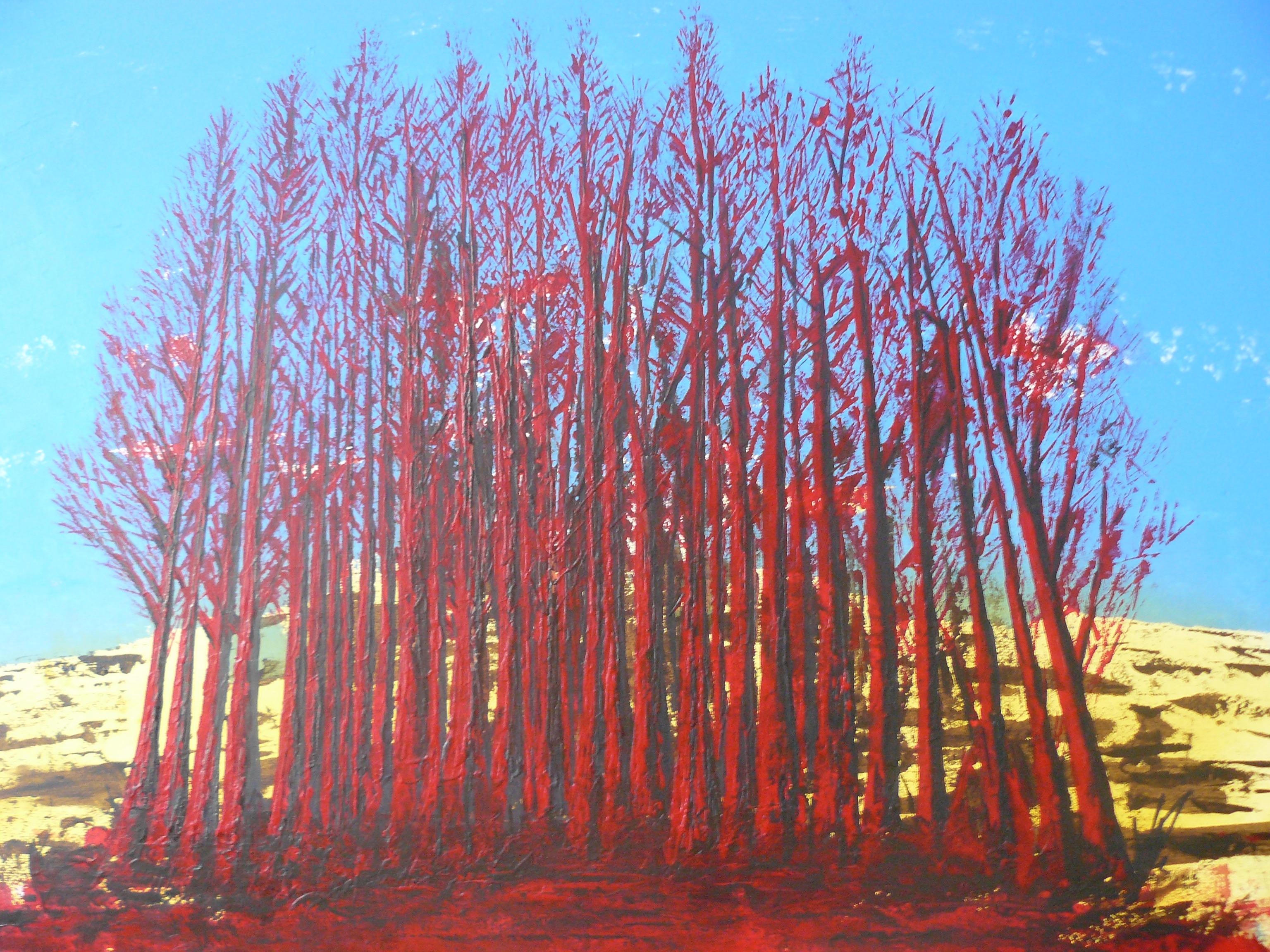 2012-2 het rode bos